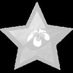 Smoke Free Hotel Prommotional Award
