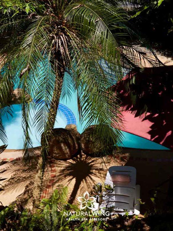 Aerial Pool View Natural Wing Spa Koh Samui